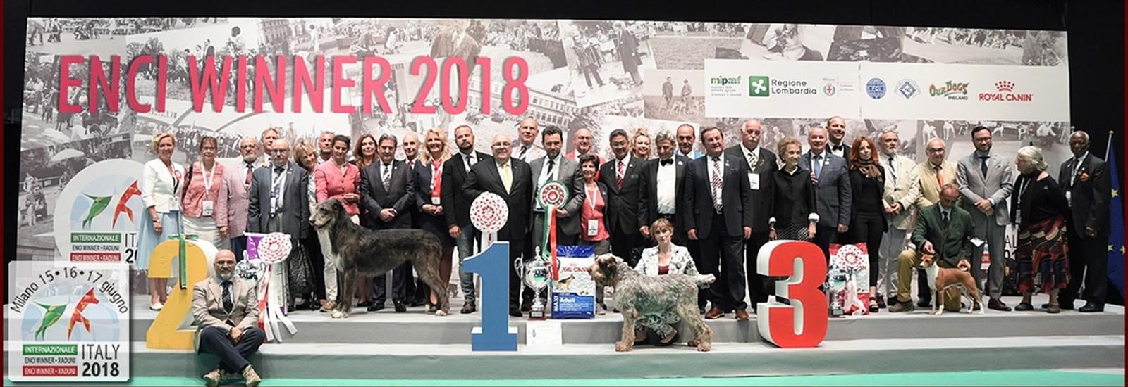 Home Enci Winner 2018 Milan