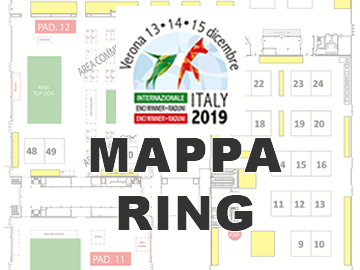 ENCI Winner2019: mappa padiglioni e parcheggi FieraVerona - ENCI Winner 2019: map of pavilions and car parks FieraVerona